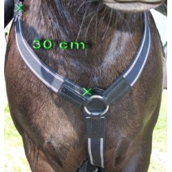 Elastic breastplate
