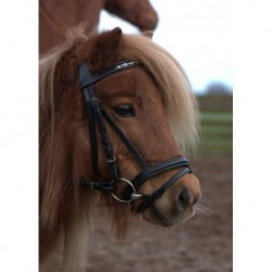HB luxury silver bridle