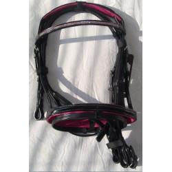 DHH bridle Pink Line