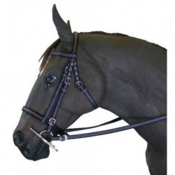 Reflection Bridle