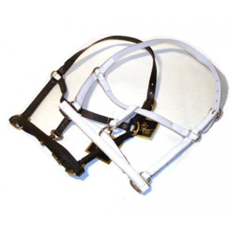 HB leather mini mini halter