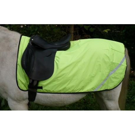 Exercise Sheet fleece lined